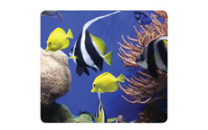 Fellowes 59093 Earth Series Under the Sea (6pk)
